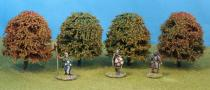 Deciduous Autumn 70mm Pack of 4